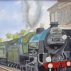 Sir Lamiel  Dorset Coast Express by Carole Robins