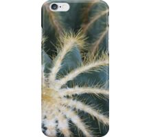Sharp Beauty - Elegantly Ordered Cactus Needles iPhone Case/Skin