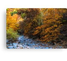 Blue Stones, Yellow Leaves - a Dry River Impressions Canvas Print