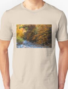 Blue Stones, Yellow Leaves - a Dry River Impressions T-Shirt