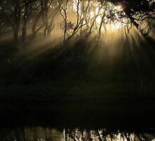 Last Light by Kitsmumma