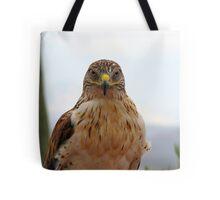 Ferruginous hawk portrait Tote Bag