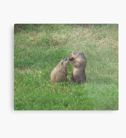 I love you, Mommy, can I have your tomato? Metal Print