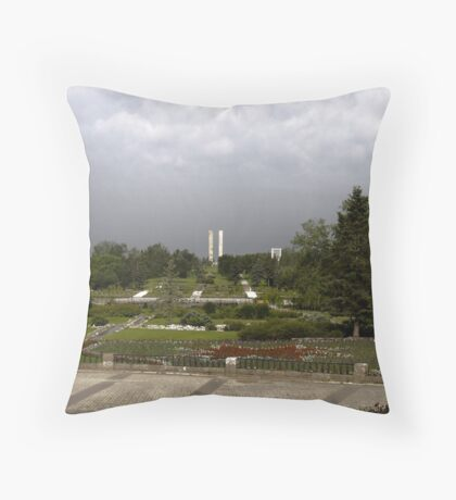 peaceful view Throw Pillow