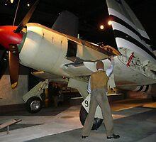 Hawker Sea Fury by stevealder