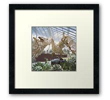Swan Sculpture Framed Print