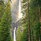 """""""Yosemite Falls"""" by Lynn Bawden"""