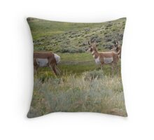 Pronghorn on alert - Yellowstone National Park Throw Pillow