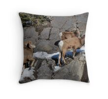 Easy Up Throw Pillow