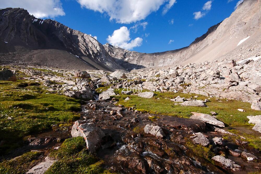 High altitude meadows by zumi