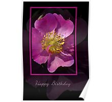 Happy Birthday - Pink Flower on Black Background Poster