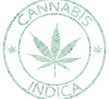 Cannabis indica stamp by Laschon Robert Paul
