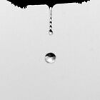 Catching a Rain Drop by DBArt