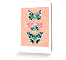 Lepidoptery No. 3 by Andrea Lauren  Greeting Card