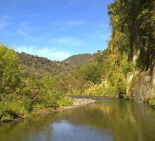 New Zealand, Hiking/hunting/fishing North Island by DaveZ