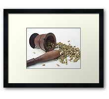 The Famous spice know as Elaiti Framed Print