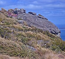 On top of the nut , stanley tasmania australia by geoffgrattan