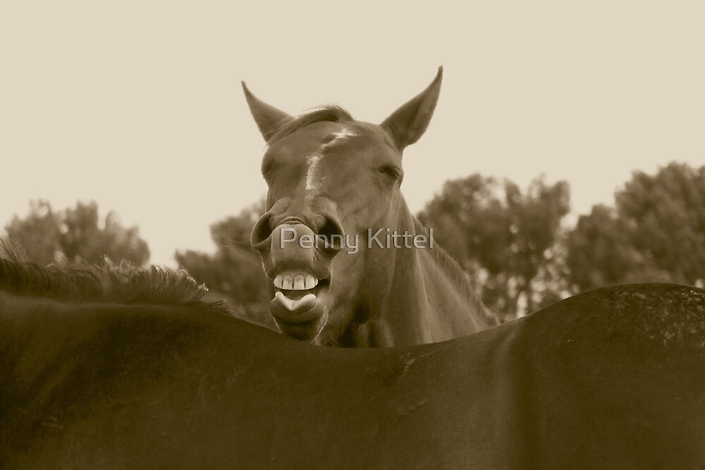 Say what? by Penny Kittel
