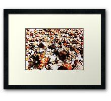 Stones, Rocks and Debris Framed Print