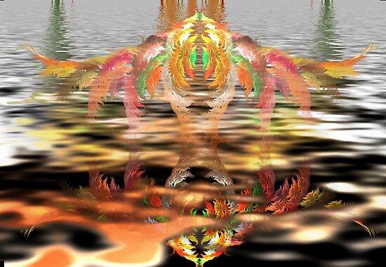 Reflection by innacas