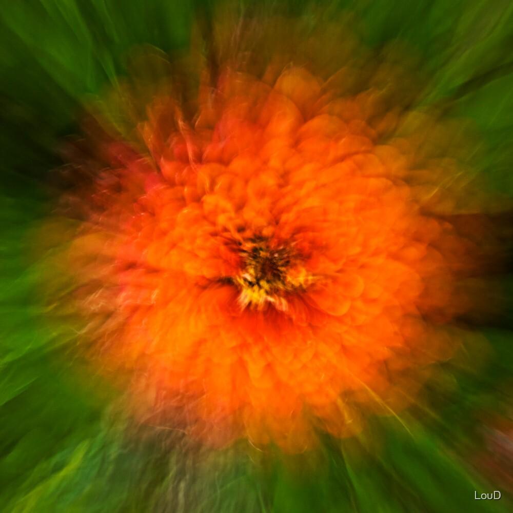 Orange dream by LouD