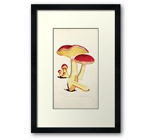 Coloured figures of English fungi or mushrooms James Sowerby 1809 0121 Framed Print