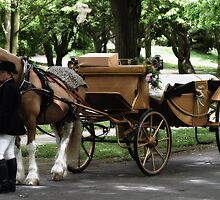 Wedding Carriage  by Thomas Banks