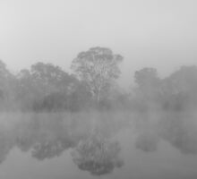 Bowhill in Black and White by bsn-photography