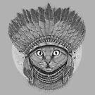 Native Cat by Harry Fitriansyah