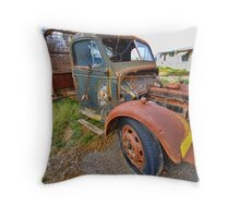 Have I ever Seen Better Days! Throw Pillow