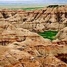 VIEW IN THE BADLANDS by FSULADY