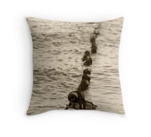 caught in time and tide Throw Pillow