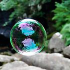 Reflection Caught In A Bubble by Jim Wilson