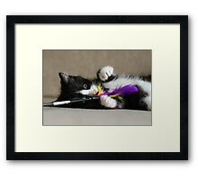 Fun with feathers Framed Print