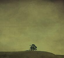 Desolate Horizons by Rebelle