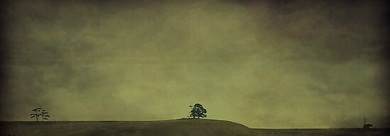 Desolate Horizons by Cathy  Walker