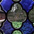garden view through window (1) by nicolaMY