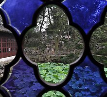 garden view through window (1) by nicolaMY