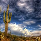 Wandering with the Arizona monsoon by Mike Olbinski