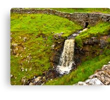 Dales Waterfall Canvas Print