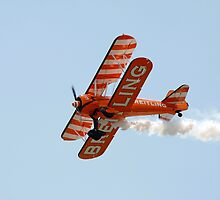 Biplane at an airshow by steveball