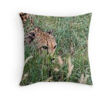 Stalk Throw Pillow
