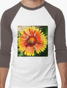 Orange and Red Gaillardia Prairie Flower with Bee Macro Men's Baseball ¾ T-Shirt