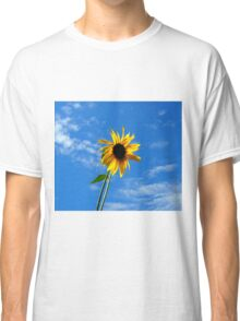 Lone Yellow Sunflower against the Summer Blue Sky Classic T-Shirt