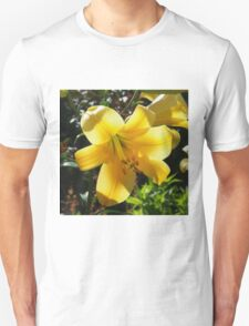 Sunlight filtering through Yellow Day Lilly Flower T-Shirt