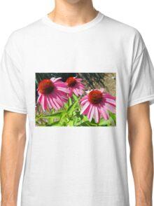 Pink and Purple Echinacea Cone Flower Macro Classic T-Shirt