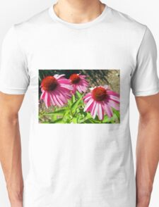 Pink and Purple Echinacea Cone Flower Macro T-Shirt