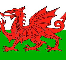 wales flag by tony4urban