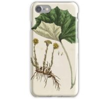 A curious herbal Elisabeth Blackwell John Norse Samuel Harding 1737 0522 Colts Foot or Poles Foot iPhone Case/Skin