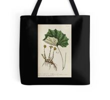 A curious herbal Elisabeth Blackwell John Norse Samuel Harding 1737 0522 Colts Foot or Poles Foot Tote Bag